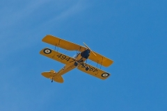 A Tiger Moth (full size) checks out our field.