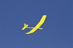 Ann's plane aloft